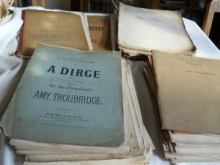 Amy Troubridge Archive